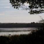Bagaduce River Canoe Access Trail