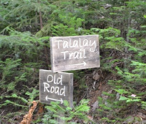 Furth Talalay old road junction sign