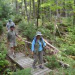 Furth Talalay trail