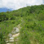 Blue Hill Mountain