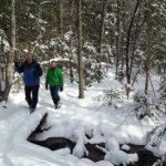 Kingdom Woods winter hikers