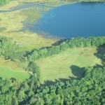 aerial of Baum